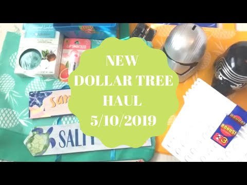 NEW DOLLAR TREE HAUL | May 10 2019