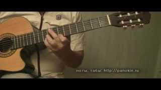 Мой ласковый и нежный зверь - гитара. Е. Дога