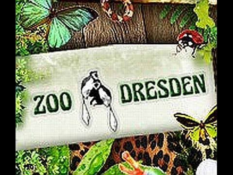 zoo dresden youtube. Black Bedroom Furniture Sets. Home Design Ideas