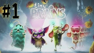 Tiny Brains | Part 1 | Learning Our Powers