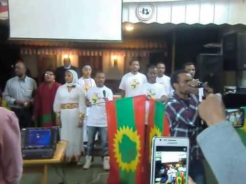 Guyyaa Gootota Oromo bara 2013 magaala Oslo , Norway .