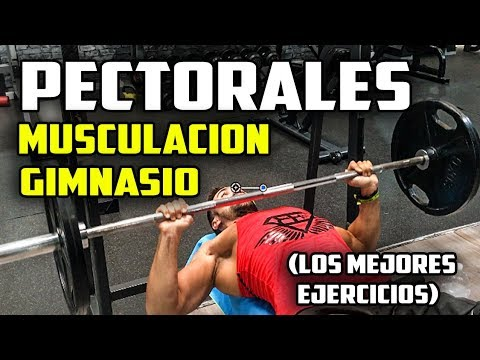 ejercicios para pecho gimnasio