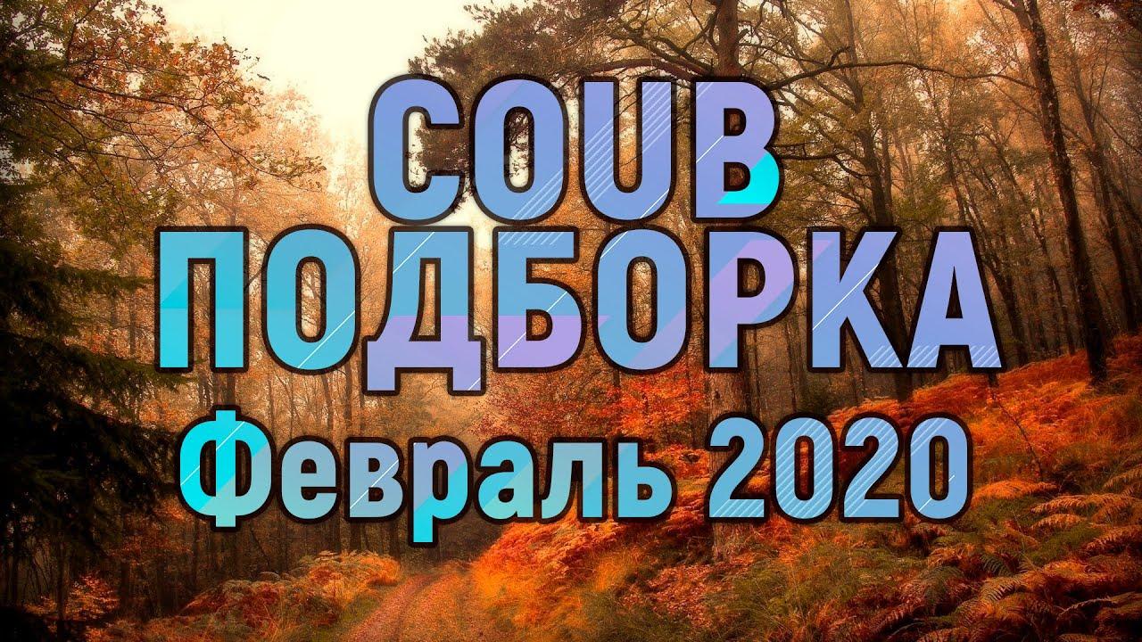 Coub подборка - февраль 2020