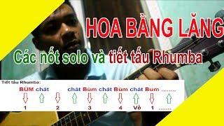HOA BẰNG LĂNG Guitar BOLERO CƠ BẢN NHẤT ĐỂ TỰ HỌC ĐÀN