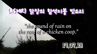 (ASMR) 닭장의 함석지붕 빗소리