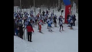 Все на лыжню! День зимних видов спорта отметили в Старом Осколе