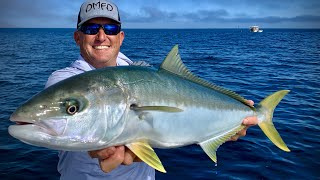 Pacific Yellowtail {Catch Clean Cook} Mag Bay, Mexico