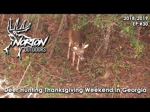 Deer Hunting Thanksgiving Weekend In Georgia