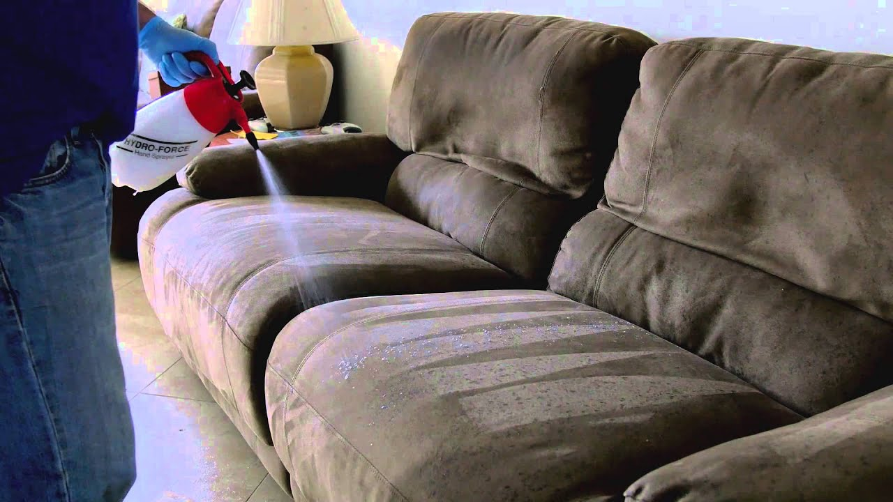 Upholstery Cleaning Dog Smell on Couch