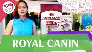 Royal Canin на ilikepet
