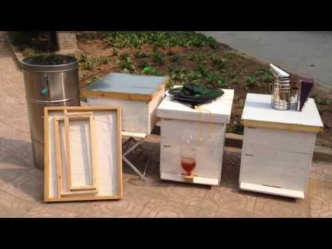 Thùng ong, các dụng cụ vật tư nuôi ong mật
