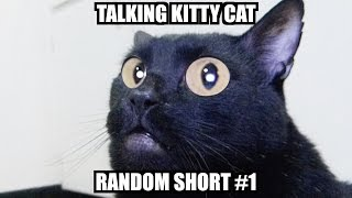 talking kitty random short 1
