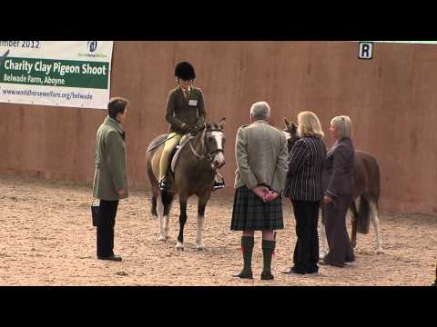 HRH The Princess Royal opens new horse rescue facilities in Scotland