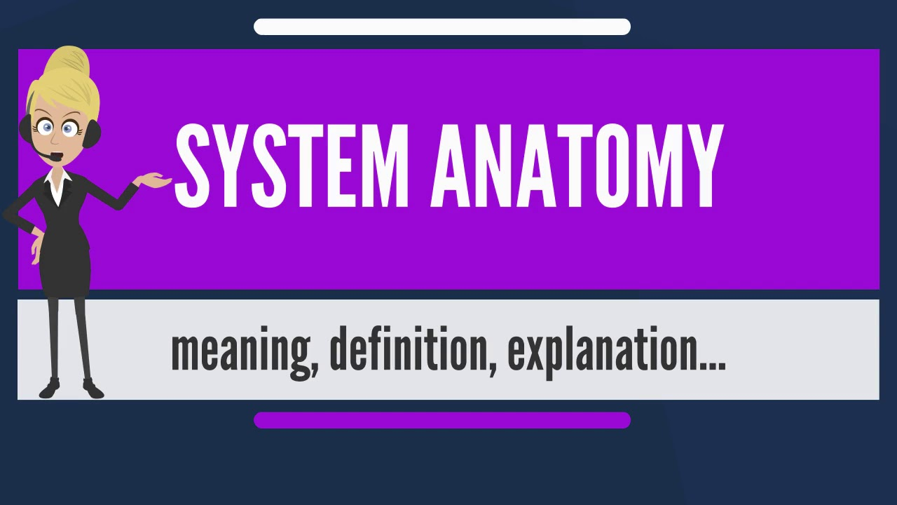 What is SYSTEM ANATOMY? What does SYSTEM ANATOMY mean? SYSTEM ...