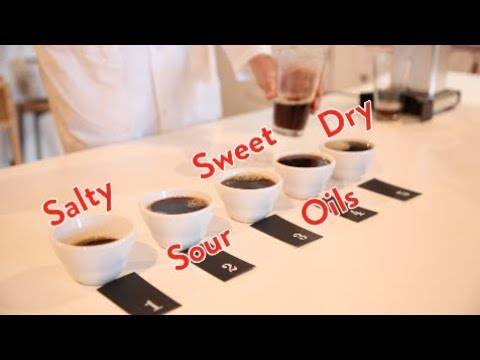 Extraction of Coffee Flavours | Dr Monika Fekete