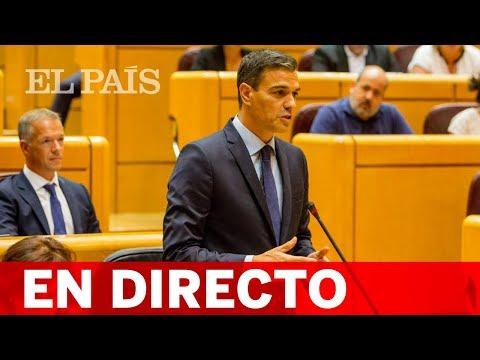 Directo | Pedro Sánchez, en la sesión de control del Senado