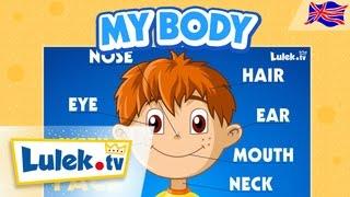 Części ciała po angielsku dla dzieci 🇬🇧 Lulek.tv