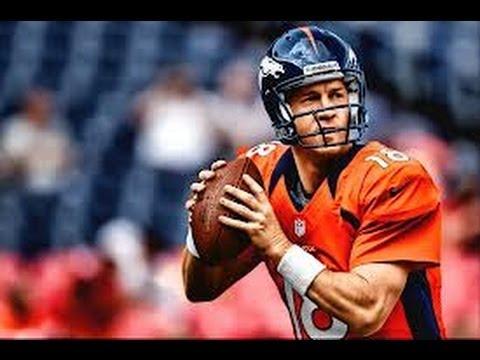 2013 NFL Season Predictions!