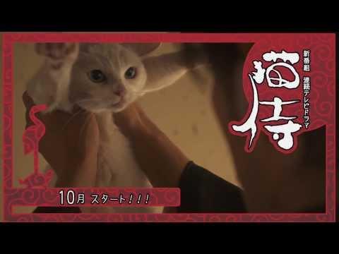 北村一輝 猫侍 CM スチル画像。CM動画を再生できます。