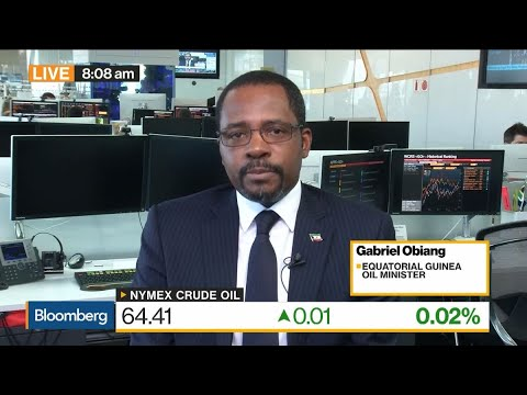 We Want a Stable Oil Price, Says Equatorial Guinea's Oil Minister