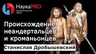 Станислав Дробышевский - Происхождение неандертальцев и кроманьонцев