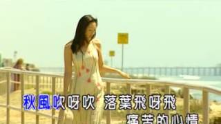 林良歡-秋風落葉-KTV