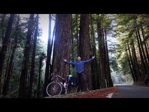 I Made It to the MARIJUANA Mecca of California // NorCal Redwoods