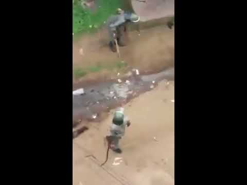 The Cameroon police and gendarmes torturing and killing demonstrators