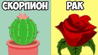 видео Растения - талисманы Близнецов