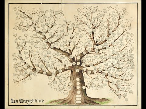 Alberi Genealogici Online - MyHeritage parte 2