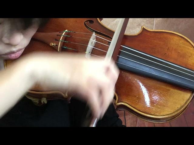 Ifstrings Master Build deluxe Wood #364 Guarneri del Gesu 1740