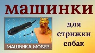 Машинка для стрижки собак #Moser В помощь грумеру! ✂✍