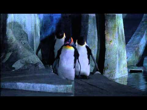 Batman, le défi - La mort du Pingouin poster