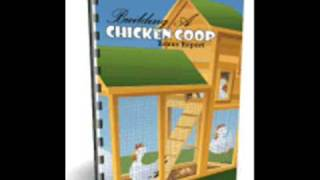 Diy Chicken Coop Building  Instructions And Tutorials