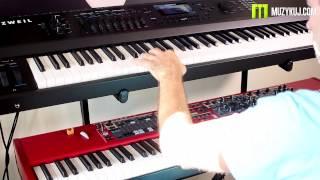 Compare Nord Stage 2 VS Kurzweil Forte Piano