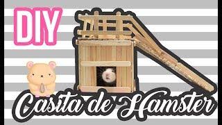 DIY l Casa para roedores con palitos de paleta