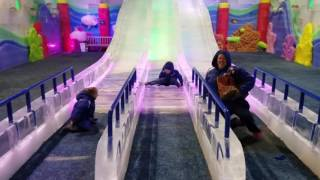 Sliding on the Ice Slides at Moody Gardens Ice Land