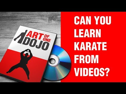 Can You Learn Karate From Videos? | ART OF ONE DOJO