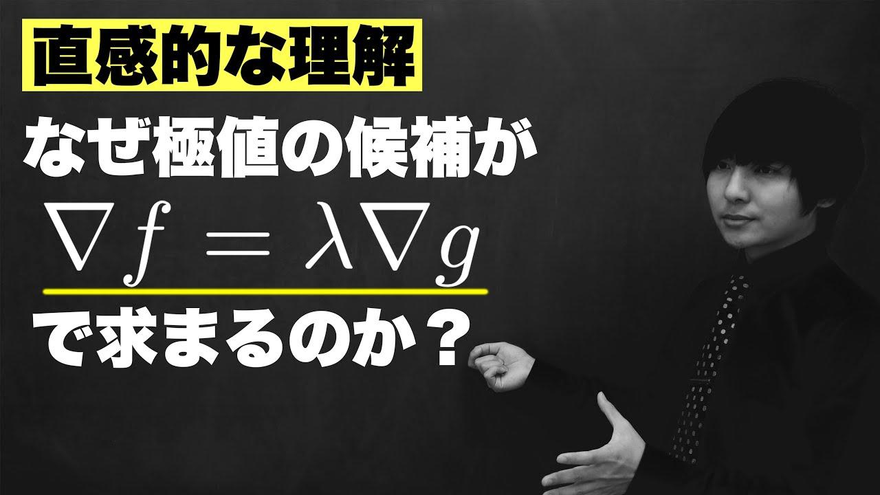 ラグランジュの未定乗数法の気持ち【条件付き極値問題】