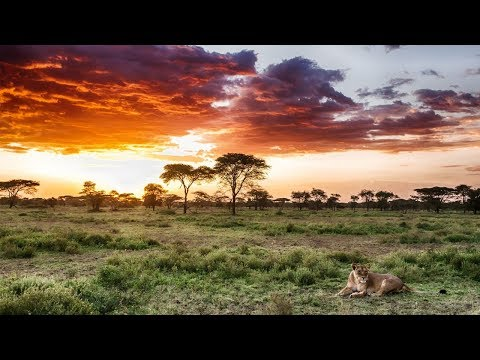 Travel to : Djibouti !!!
