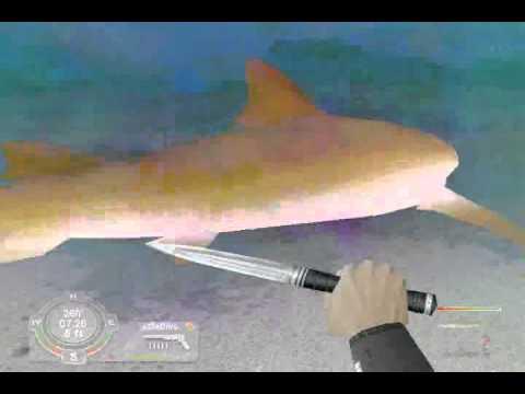 Shark! Hunting The Great White Part 1: Lemon Shark