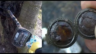 Sygnał w drzewie, Monety, Biżuteria - Wykopki na łonie natury