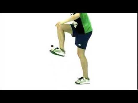 GORILLA Footbag - Clipper (7)