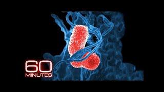 Expert: We took antibiotics for granted