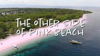 Other Side of the Pink Beach - Santa Cruz Island   the Creative Life - Ep4