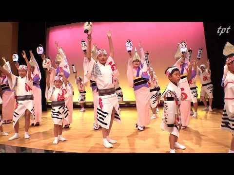 阿波鳴連  阿波おどり会館 特別公演 第1部演舞