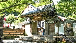 鈴虫寺(華厳寺) 嵐山 京都 / Suzumushi-dera Temple (Kegon-ji) Kyoto /화엄사 아라시야마 교토
