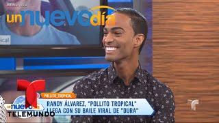 El Pollito Tropical le pone sabor a las redes sociales   Un Nuevo Día   Telemundo