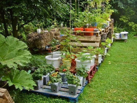budget smart gardening hacks how to make a garden without
