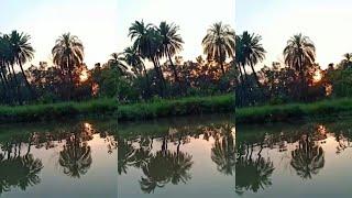 Beautiful natural scene | Mery hania | whatsapp status |